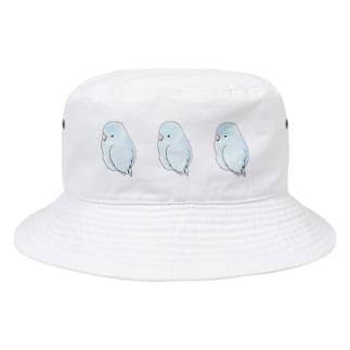 可愛いアメリカンホワイト マメルリハちゃん【まめるりはことり】 Bucket Hat