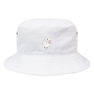 まめるりはことりのコザクラインコ バイオレットパイドちゃん【まめるりはことり】 Bucket Hat