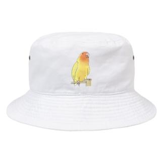 まめるりはことりの得意げ可愛い コザクラインコちゃん【まめるりはことり】 Bucket Hat