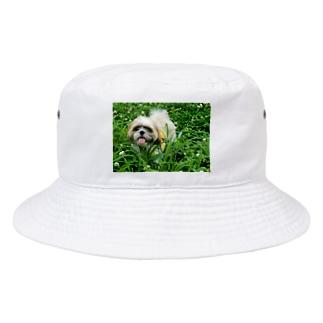 こがちゃんの草原のレオくん Bucket Hat