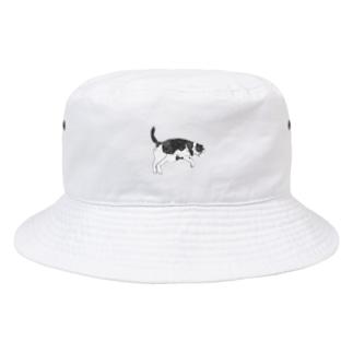 ハチワレくうちゃんIV Bucket Hat