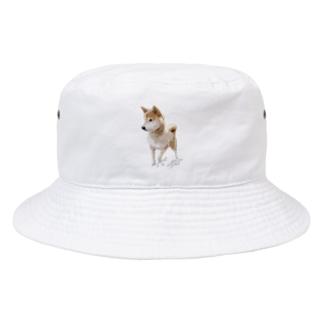 歩く太郎イラスト風【柴犬】名前入り Bucket Hat