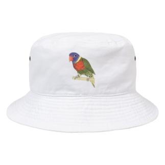 色合いが綺麗なゴシキセイガイインコちゃん【まめるりはことり】 Bucket Hat