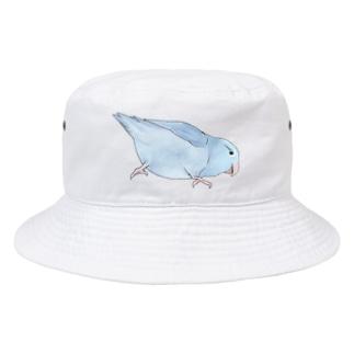 マメルリハ もちふりちゃん【まめるりはことり】 Bucket Hat