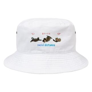 ニャンコ3匹でソーシャルディスタンス😸 Bucket Hat