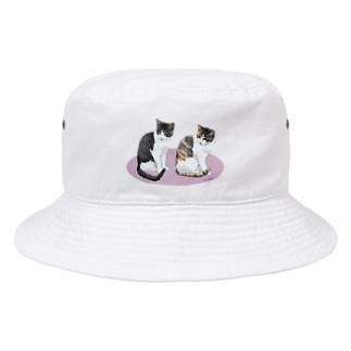 河原の野良猫ビワとコチャ Bucket Hat