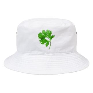 朝採れパクチー(タイ産) Bucket Hat
