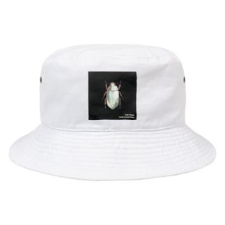 illust.nulのキンギンコガネ Bucket Hat