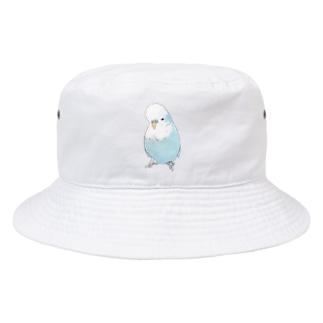 可愛いジャンボセキセイインコ【まめるりはことり】 Bucket Hat