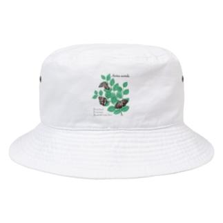 アカボシゴマダラとエノキ Bucket Hat