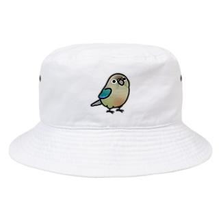 Chubby Bird ウロコインコ ターコイズシナモン Bucket Hat