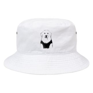 ゴールデンレトリバーお洋服【せいこせんせい】 Bucket Hat