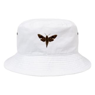 アニマルカフェ The zoo &猛禽屋中部の標本Tシャツ Bucket Hat