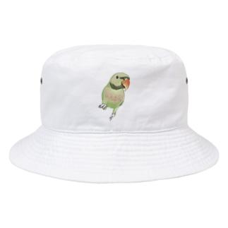 ご機嫌なダルマインコちゃん【まめるりはことり】 Bucket Hat