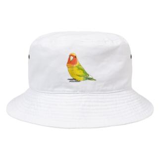 コザクラインコ ななちゃん Bucket Hat