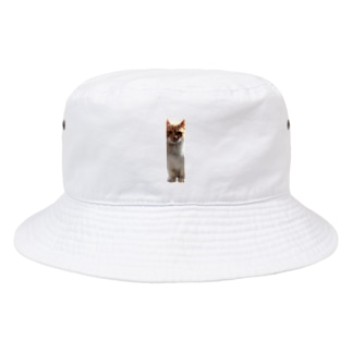 STEP IN そで Bucket Hat