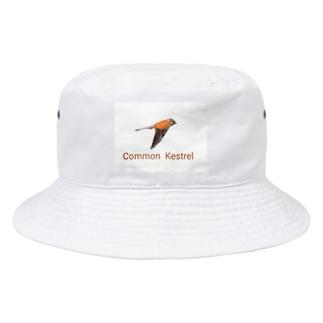 チョウゲンボウ Bucket Hat