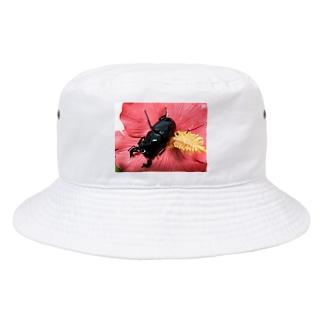 Higurashi430のクワガタ ☆タランドゥス☆3 Bucket Hat