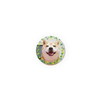 豆柴ビーン丸ワッペン Badges