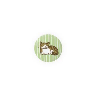 まったりトラ猫 缶バッジ