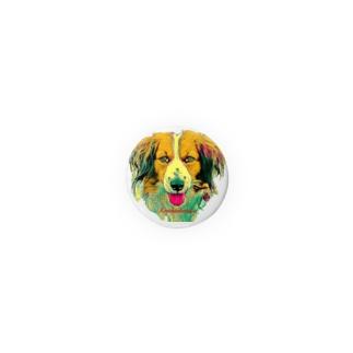 kooikerhondje real face 1 Badges
