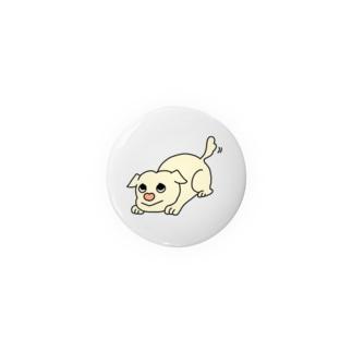 癒し犬たけちゃん Badges