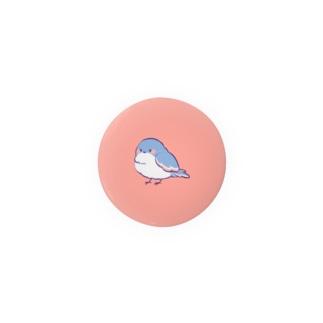 ことり缶バッジ ピンク Badges