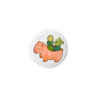 KAPI plants Badges