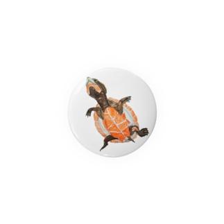 ニシキマゲクビガメ Badge
