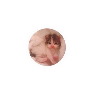 うちの猫 Badges