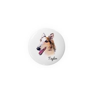 テイラー Badges