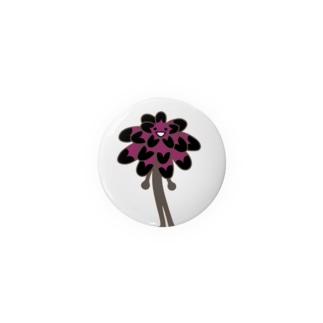 多肉植物たにくさんの多肉植物たにくさん 黒法師 Badges