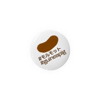 #モルモット 缶バッジ