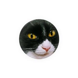 マスク猫おはぎ Badges