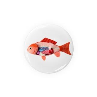 解剖錦鯉 Badges