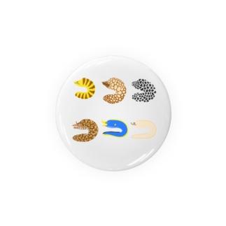 ウツボ 六種類 Badges