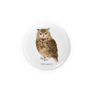 ベンガルワシミミズク カラー Badge