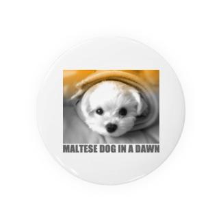 夜明けのマルチーズ14 Badges