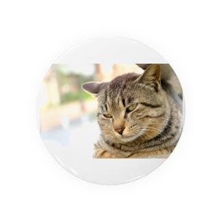 猫のファンサービス Badges