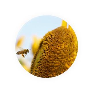 夏っぽいハチ Badges