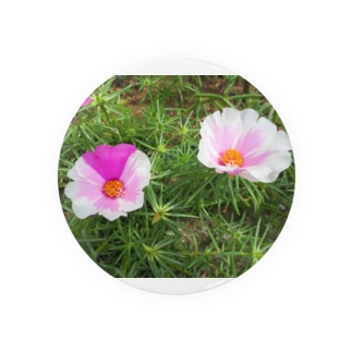 ピンクのマダラちゃん Badges