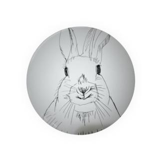 Peter rabbit 缶バッジ