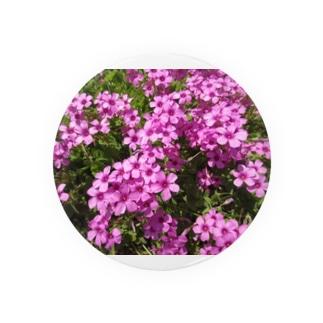 野の花の可憐さ・・・ Badges