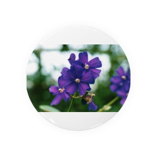 ヴァイオレットが咲いている Badges