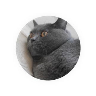 団子の猫2 Badges