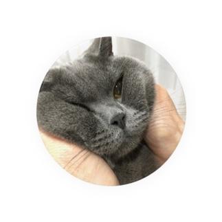 おにぎり猫 Badges