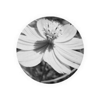 コスモス(Black and White) Badges