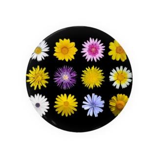 キク科の花 缶バッジ