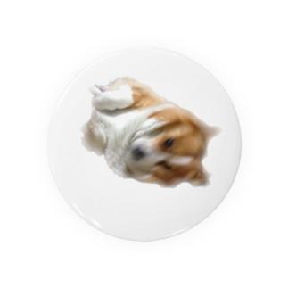 FUNKY  DOG Badges