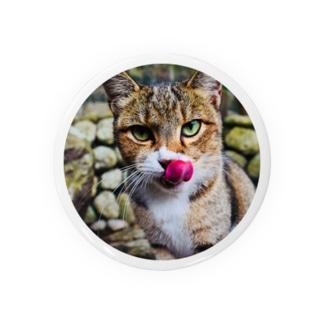 舌なめずりねこ(まる) Badges